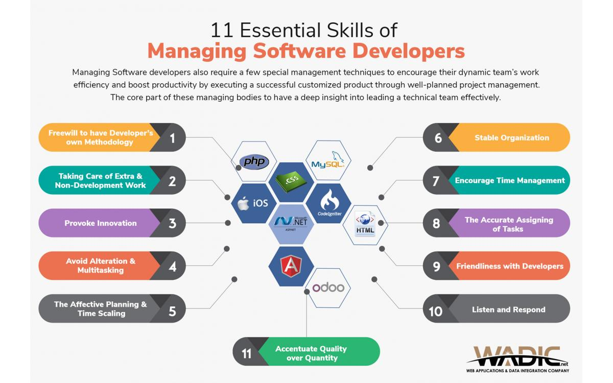 Managing Software Developers