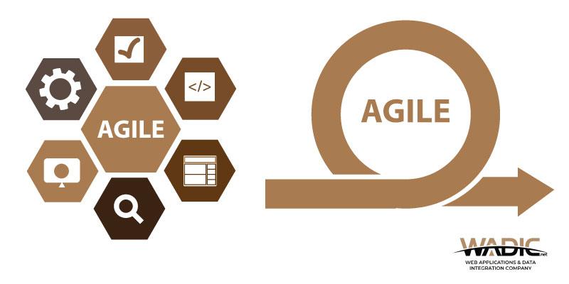 Agile Project Management Governance