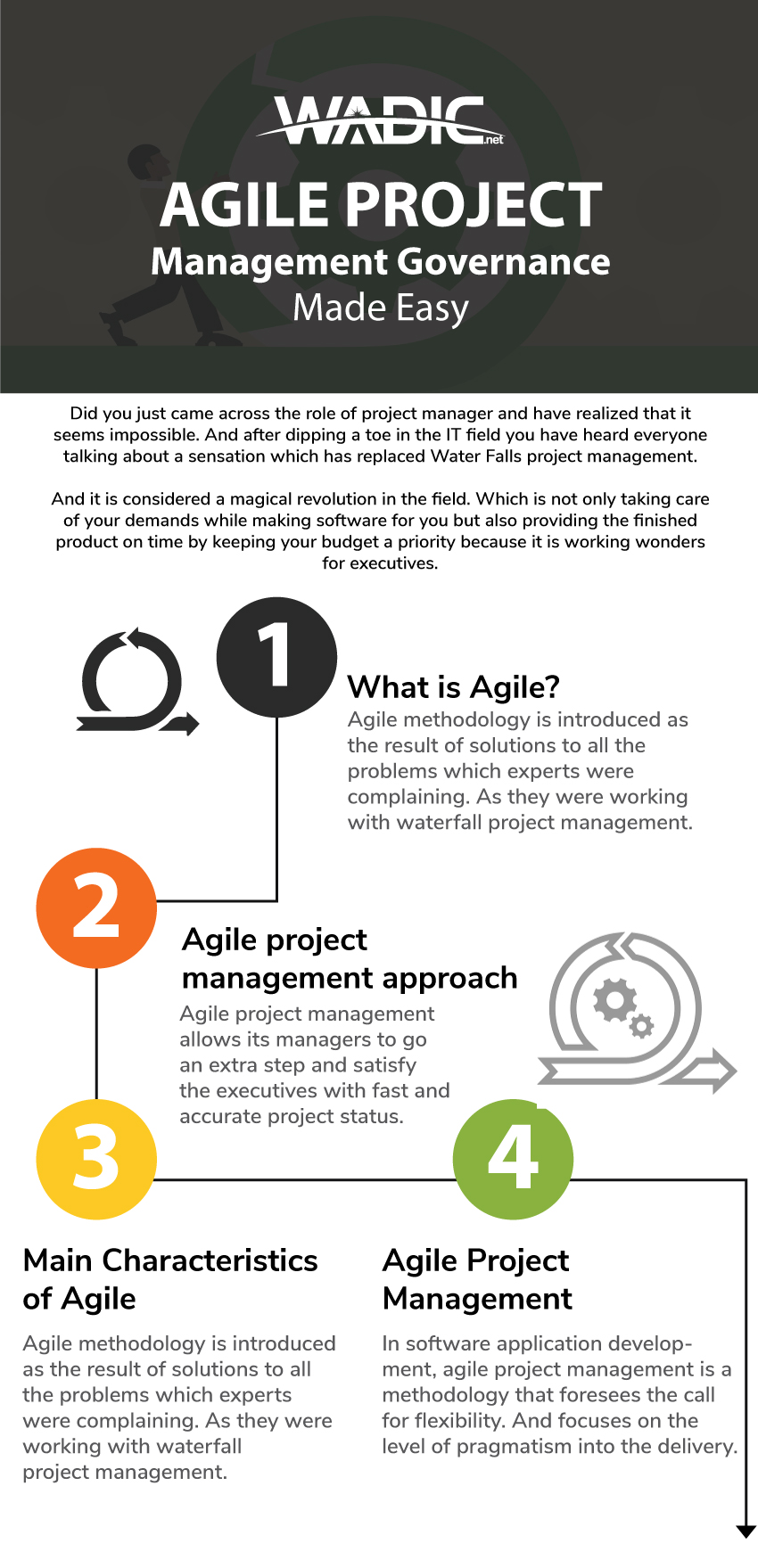 Governance of agile project methodologes