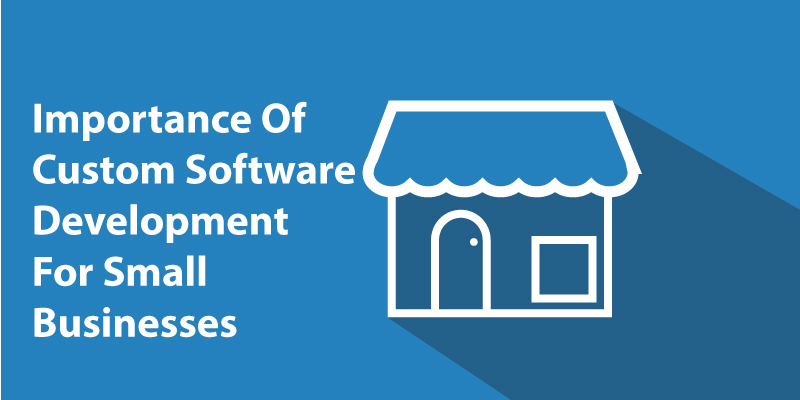 Importance-of-Custom-Software-Development-For-Small-Businesses