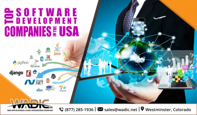 Top-Software-Development-Companies-in-the-USA (1)